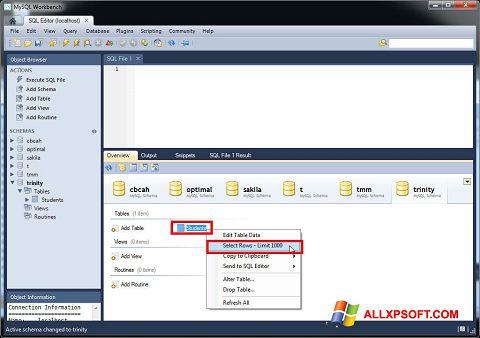 Captură de ecran MySQL Workbench pentru Windows XP