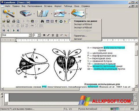 Captură de ecran CuneiForm pentru Windows XP