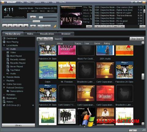 Captură de ecran Winamp pentru Windows XP
