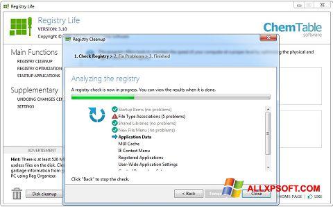 Captură de ecran Registry Life pentru Windows XP