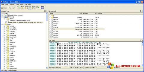 Captură de ecran DMDE pentru Windows XP